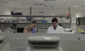Help Crowdfund A Clinical Trial On Brain Cancer
