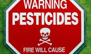 "84% of California's ""Medical Marijuana"" Contaminated with Pesticides"