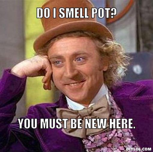 willy wonka meme marijuana pot meme