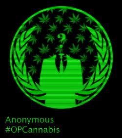 anonymous cannabis activists 420 opcannabis marijuana