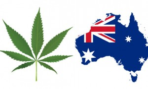 Australia may legalize medical marijuana in August