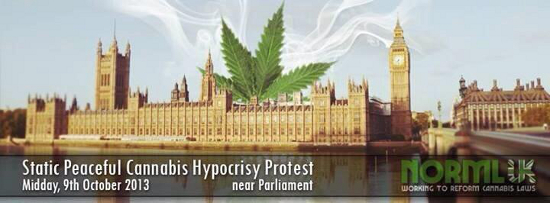 cannabis protest british parliment medical dutch bedrocan