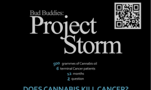 Bud Buddies: Project Storm Documentary
