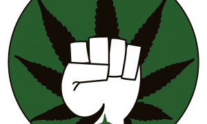 Cannabis is a Litmus Test for Freedom