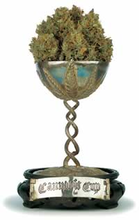 high times cannabis cup usa colorado