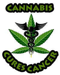 cannabis cures cancer extract oil