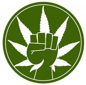 Cannabis users should unify around what we oppose, not which policies we might support