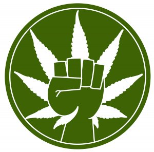cannabis fist power to the people jury nullification