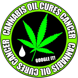 cannabis oil capsules cancer leukaemia