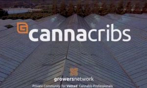 Canna Cribs S1E1 – Glass House Greenhouse