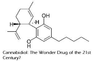 cbd cannabidiol cannabinoid seizures