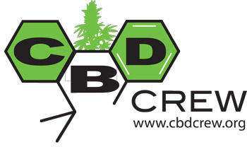 cbd crew high cbd cannabis seeds