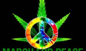 Global Marijuana March Dublin – May 2nd