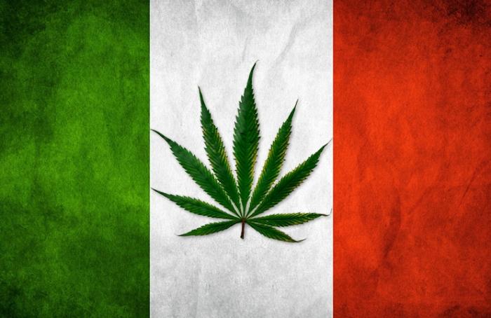 Italy cannab is