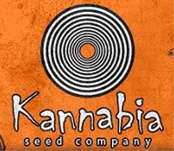 kannabia seeds spainsh seed bank marijuana