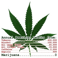 deaths from drugs zero marijuana cannabis deaths