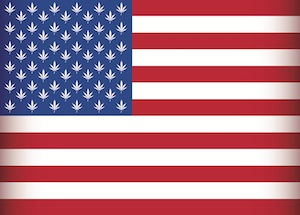 usa america marijuana state law federal
