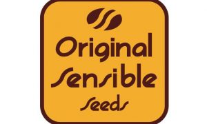 Original Sensible Seeds celebrate 25 Years