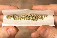 cannabis marijuana joint