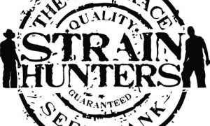Strain Hunters India Expedition