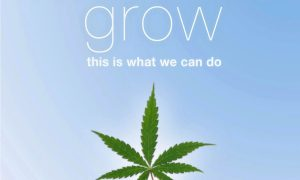 When We Grow… This is what we can do